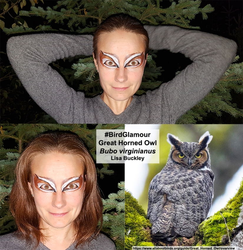 Great Horned Owl Bird Glamour